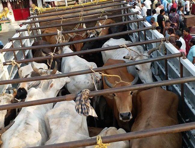 Jharkhand News : वीडियो वायरल होने के बाद पैसे ले जानवर लदा वाहन छोड़ने के मामले में एसएसपी ने चार पुलिसकर्मियों पर की कार्रवाई