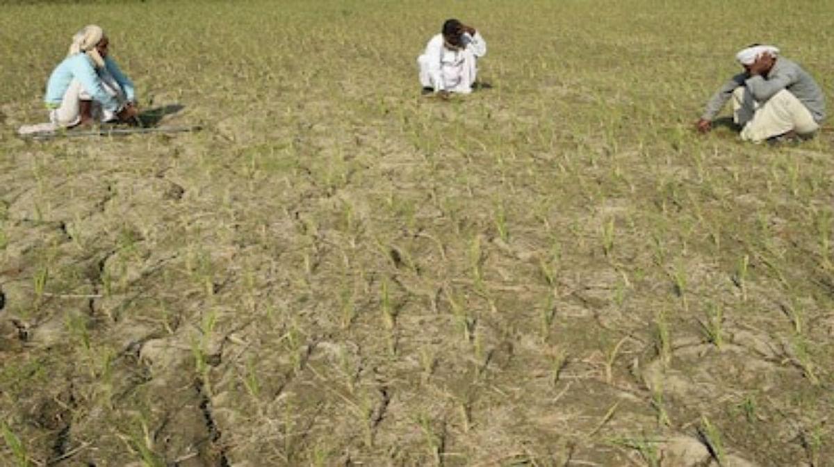 8.65 करोड़ किसानों को अप्रैल के पहले हफ्ते में 2 हजार रुपये की किस्त डाल दी जाएगी.ये किस्त किसान सम्मान निधि योजना के तहत दी जा रही है. बता दें कि किसानों को सालाना 6 हजार रुपये दिया जाता है.