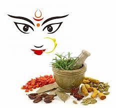 """इन 9 औषधियों में है स्वयं मां दुर्गा का वास, जानिए क्याें कहा गया  इन्हे  """"दुर्गा कवच"""""""
