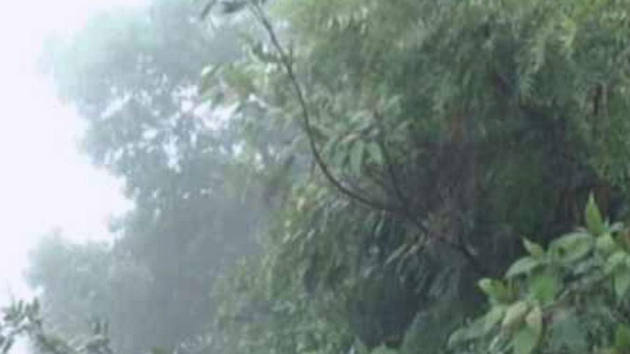 Weather Updates 5 June 2020 : मौसम विभाग ने कई राज्यों में बारिश के जताए आसार, जानिये अपने शहर के मौसम का हाल