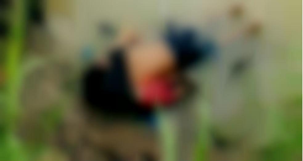 वायरल फोटो: मृत पिता-पुत्री की यह तस्वीर हो रही वायरल, पूरी कहानी जानकर रो पड़ेंगे