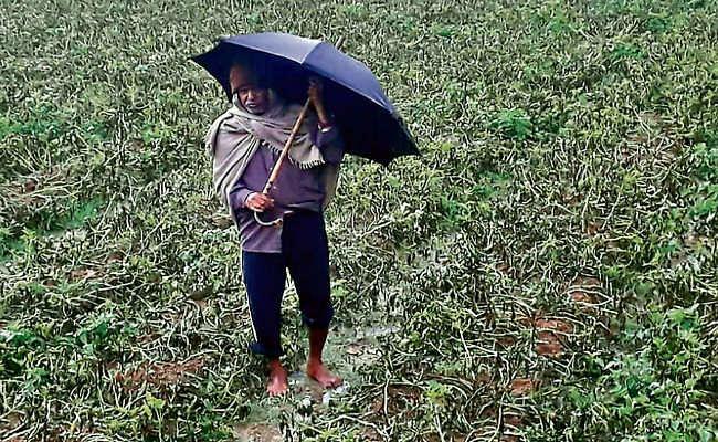 आफत की बारिश में डूब गये किसानों के पौने दो अरब