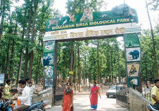 Park reopen update in jharkhand : पार्क, स्विमिंग पूल संचालन पर फौसला जल्द, जानें कब मिल सकती है पार्क संचालन की अनुमति