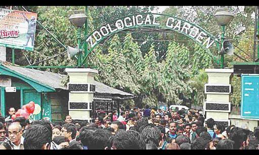 कोलकाता के अलीपुर चिड़ियाघर में दर्शकों की संख्या में कोई कमी नहीं आयी