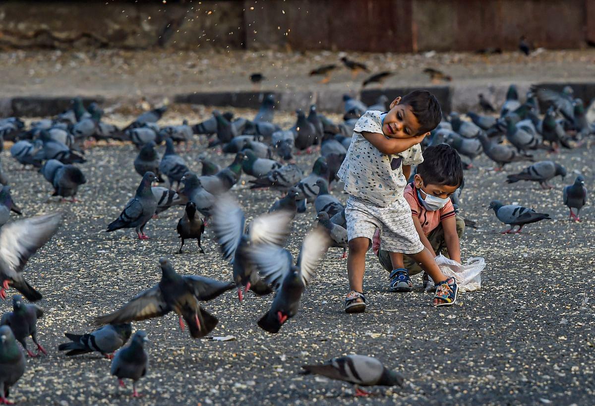 तसवीर को देखकर ऐसा लग रहा है कि बच्चे कबूतरों को दाना देते हुए कह रहे हैं कि भूख की चिंता मत करो...मैं हूं ना...