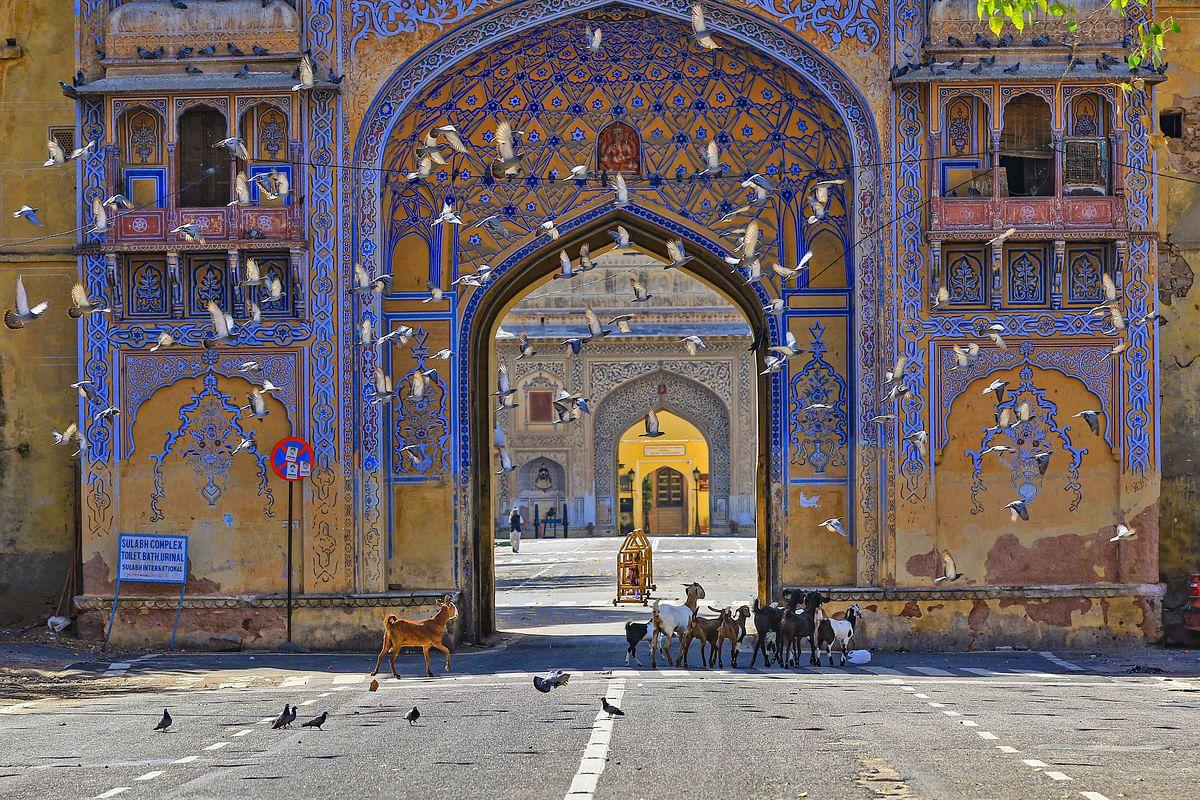 राजस्थान में कोरोना के 27 नये मामले सामने आये, 11 तबलीगी जमात से जुड़े लोग