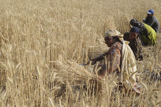 कृषि को प्राथमिकता