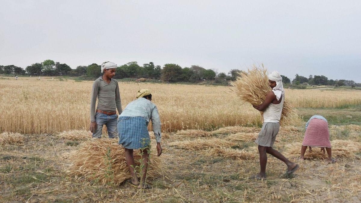 Farm bill 2020: कृषि बिल के विरोध में किसान सभा का 25 को बिहार में चक्का जाम, राजद का भी होगा राज्यव्यापी प्रदर्शन...