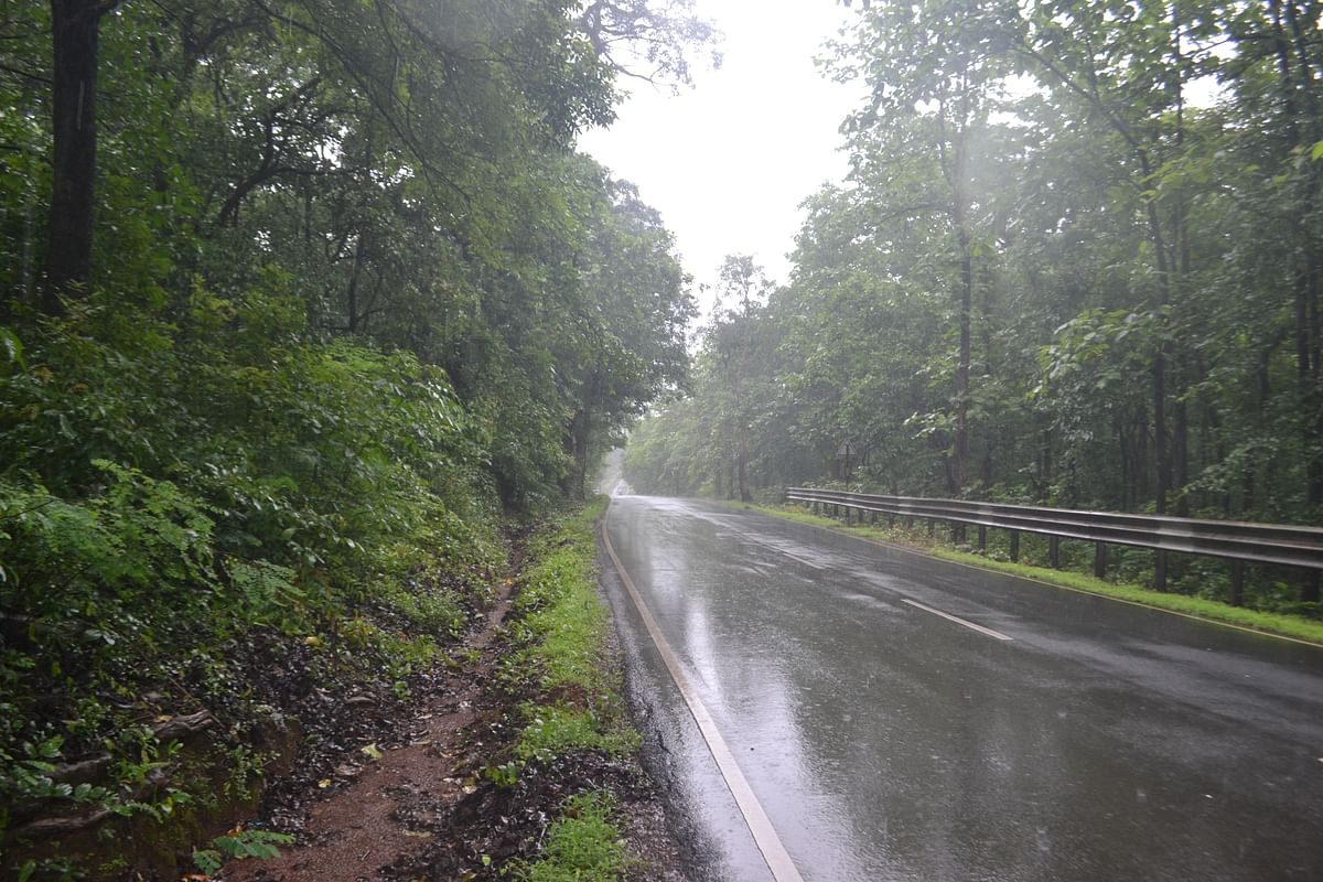 Weather Forecast Updates: झारखंड, यूपी, बिहार समेत अन्य राज्यों में उग्र हुआ मानसून, दिल्ली से लेकर केरल तक आज होगी बारिश