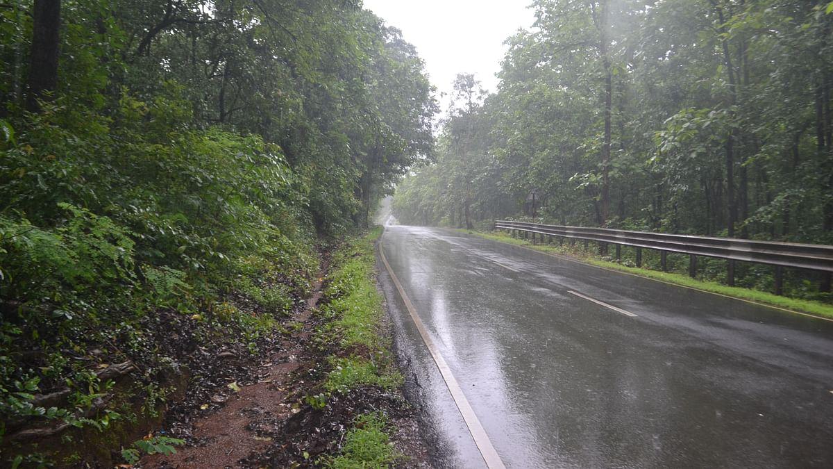 Weather Forecast Updates : झारखंड में आज से बढ़ेगी बारिश, दिल्ली, बिहार में मानसून कमजोर, जानें यूपी, बंगाल समेत अन्य राज्यों का हाल