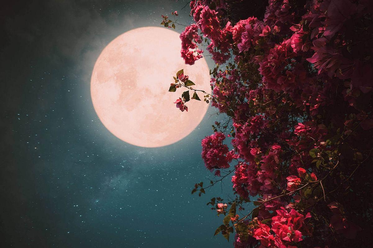 स्ट्रॉबेरी मून आकाश में दिखेगा 24 जून को, जानें इसके नाम के पीछे का रहस्य