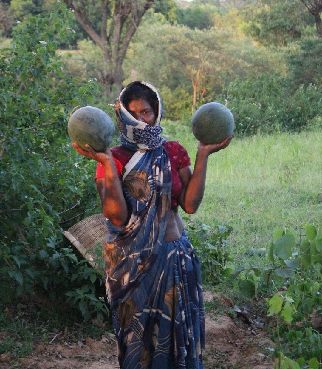 गुड न्यूज : लॉकडाउन में भी खिले किसानों के चेहरे, कृषि नियंत्रण कक्ष के जरिए बिक रहीं सब्जियां