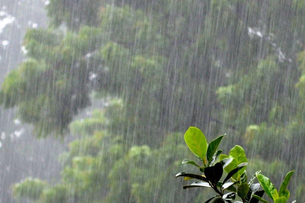 Weather Forecast LIVE Updates :पश्चिमी विक्षोभ से मौसम में आया बदलाव, देश के ज्यादातर हिस्सों में आज बारिश के आसार