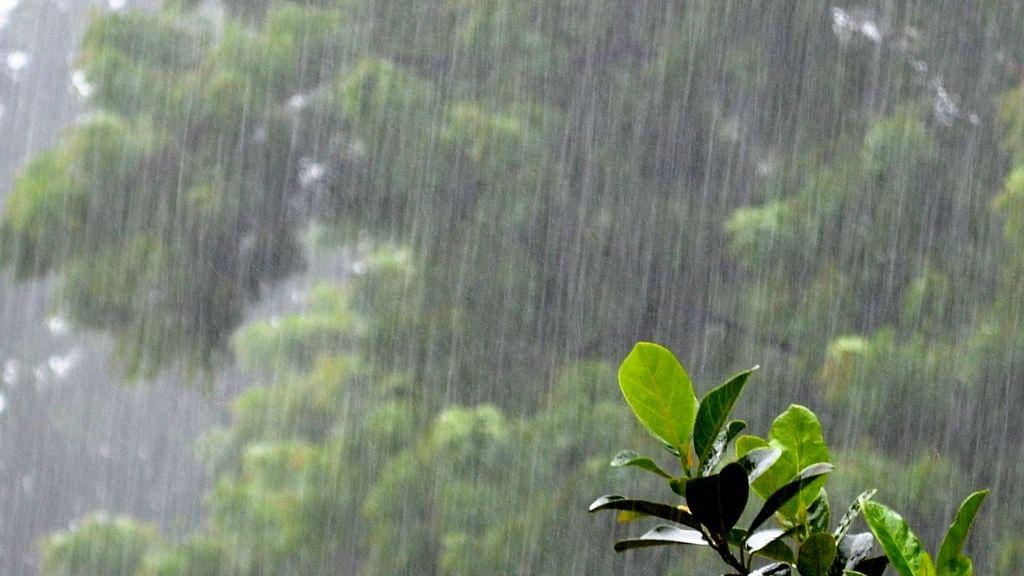Weather Forecast Updates: झारखंड में झमाझम बारिश शुरू, जानें  बिहार, दिल्ली, यूपी समेत अन्य राज्यों का हाल