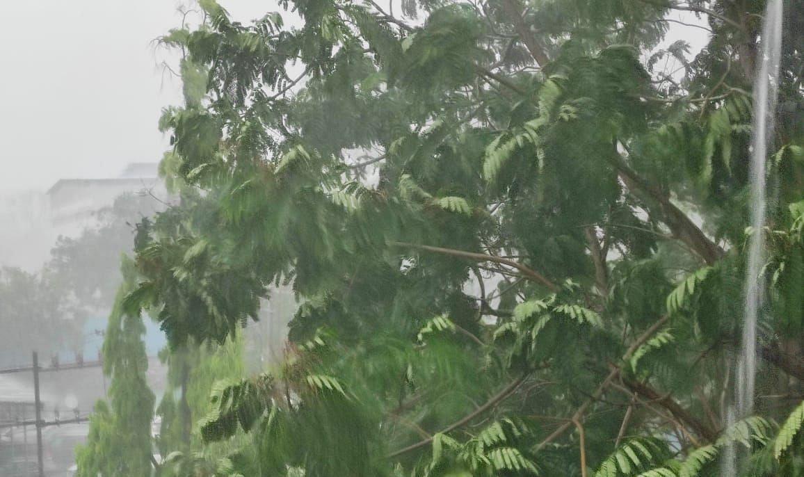 Bihar Weather Update: अगले 24 घंटों के लिए मौसम विभाग का अलर्ट, जानिए कैसा रहेगा कल मौसम