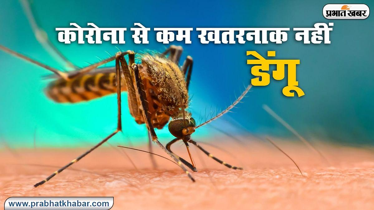 5 साल में 6.5 लाख भारतीयों को हुआ डेंगू, जानिए बिहार-झारखंड के लोगों में कितना है खौफ