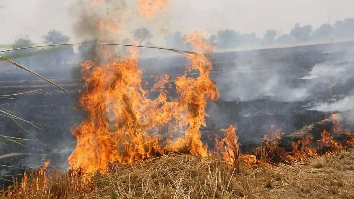 फसल जलाने को लेकर कृषि विभाग ने की कड़ी कार्रवाई