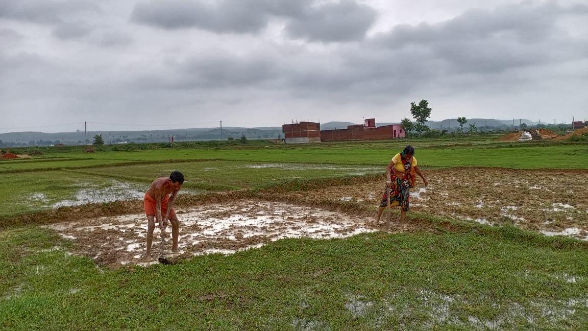 बिहार में हर ब्लाक के किसान अब सीखेंगे खेती का ककहरा, छह सप्ताह का होगा कोर्स
