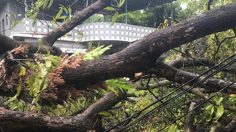 Cyclone Alert : निसर्ग तूफान के बाद और भी कई साइक्लोन आएंगे, जानिए क्या कह रहे मौसम वैज्ञानिक