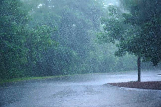 Weather Forecast: अगले दो दिनों में इन राज्यों में पहुंचेगा मानसून, दिल्ली को करना होगा अभी और इंतजार