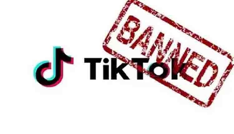 TikTok Ban: गूगल प्ले स्टोर और ऐपल ऐप स्टोर से हुई छुट्टी, तो टिकटॉक ने दी सफाई- किसी से डेटा शेयर नहीं किया