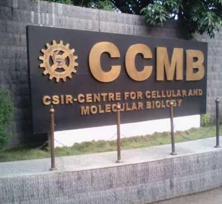 हैदराबाद स्थित सीसीएमबी ने खोज निकाला कोरोना जांच का सस्ता और सटीक तरीका
