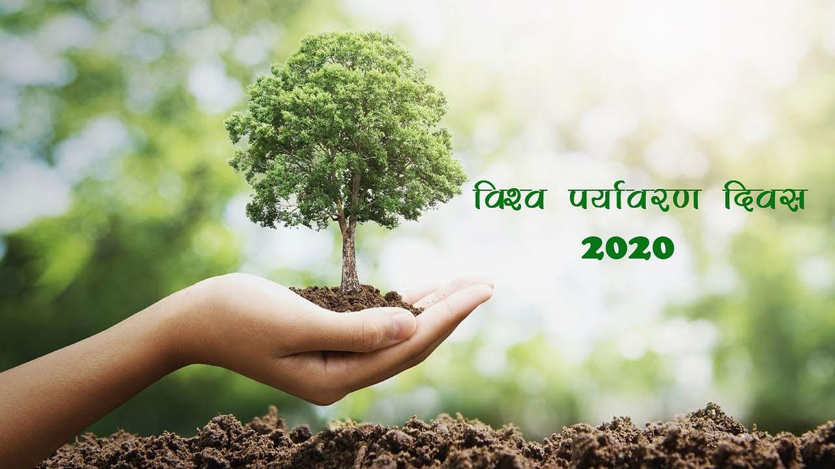 World Environment Day 2020: लॉकडाउन में भी घर में रहकर ऐसे मनाएं विश्व पर्यावरण दिवस