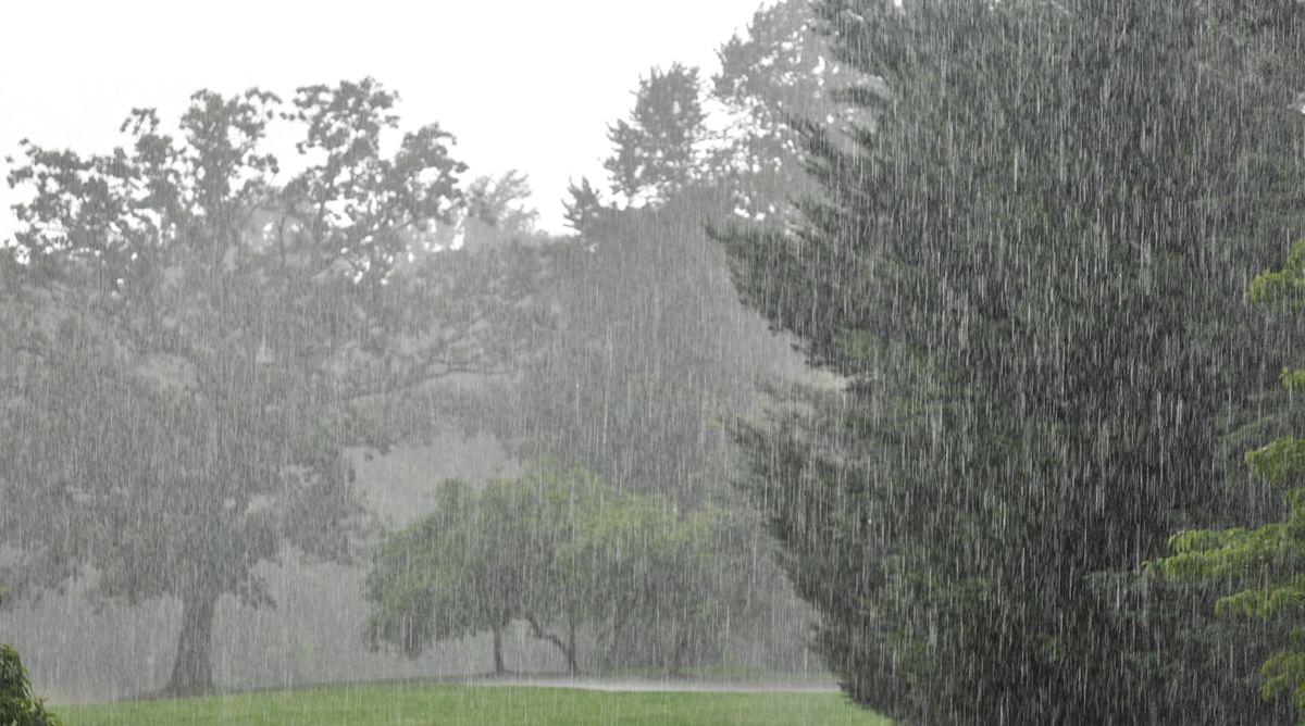 Weather Forecast : झारखंड में फिर से सक्रिय हो रहा मानसून, आज भारी बारिश के आसार, वज्रपात की आशंका
