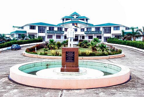 Coronavirus In Jharkhand : झारखंड में कोरोना का कहर, कला संस्कृति विभाग के सहायक निदेशक की कोरोना से मौत, रांची का BAU मुख्यालय सील, तीन अधिकारी व कर्मचारी कोरोना पॉजिटिव