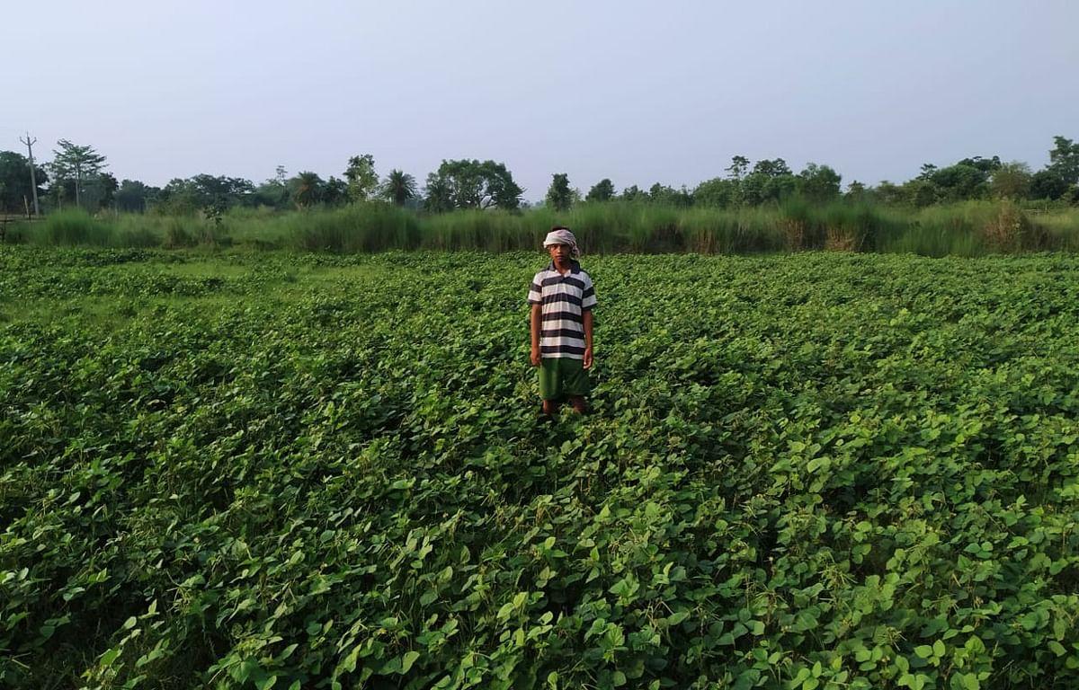 सब्जी की खेती के साथ बतख व मत्स्य पालन के जरिये स्वावलंबी बन रहे मांगुडीह गांव के किसान