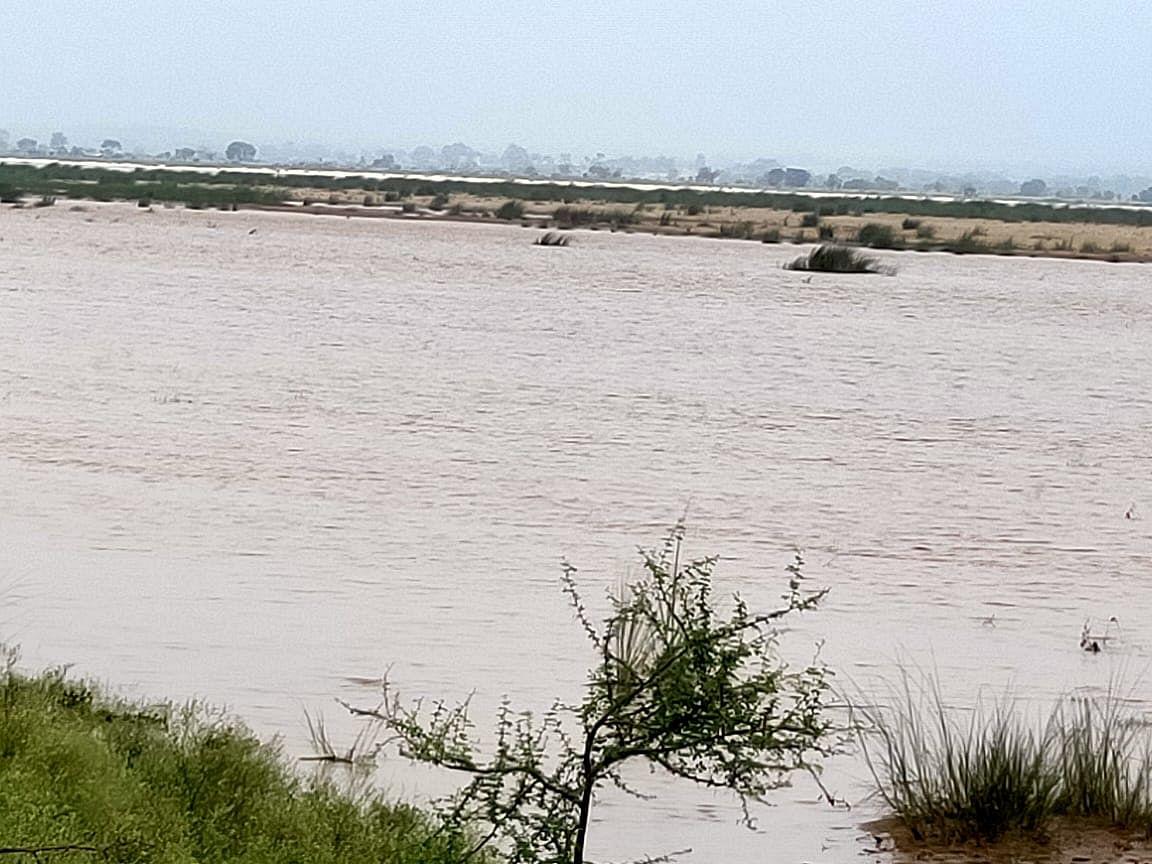 Jharkhand : गढ़वा में सोन नदी उफान पर, गांवों पर मंडराया बाढ़ का खतरा, वज्रपात से 2 की मौत, विधवा हुई बेघर
