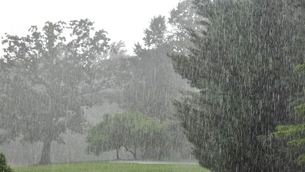 Weather Forecast LIVE Updates Today :  हाई अलर्ट पर UP-बिहार, झारखंड, मुंबई में भी जोरदार बारिश के आसार, जानें दिल्ली समेत अन्य राज्यों का हाल