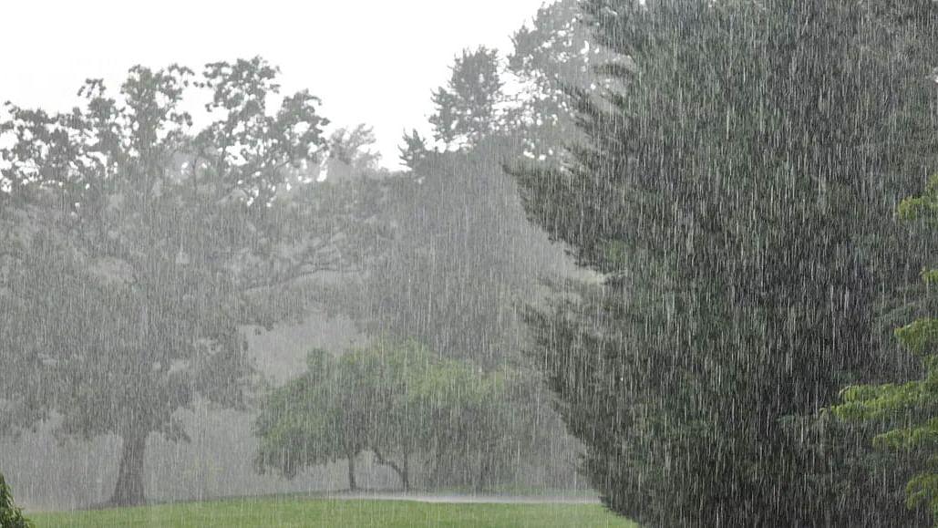 Weather Forecast Today Live Updates : झारखंड में बारिश,दिल्ली से मानसून की वापसी, जानें बिहार, यूपी सहित देश के अन्य राज्यों का हाल