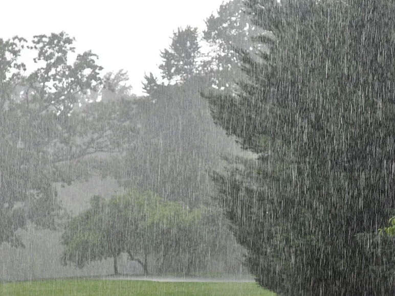 झारखंड में हफ्तेभर कैसा रहेगा मौसम का मिजाज, मानसून की वापसी पर क्या कहते हैं मौसम वैज्ञानिक ?