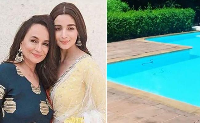 आलिया भट्ट की मां के स्वीमिंग पूल में घुसा सांप, नीतू सिंह ने कही ये बात... VIDEO