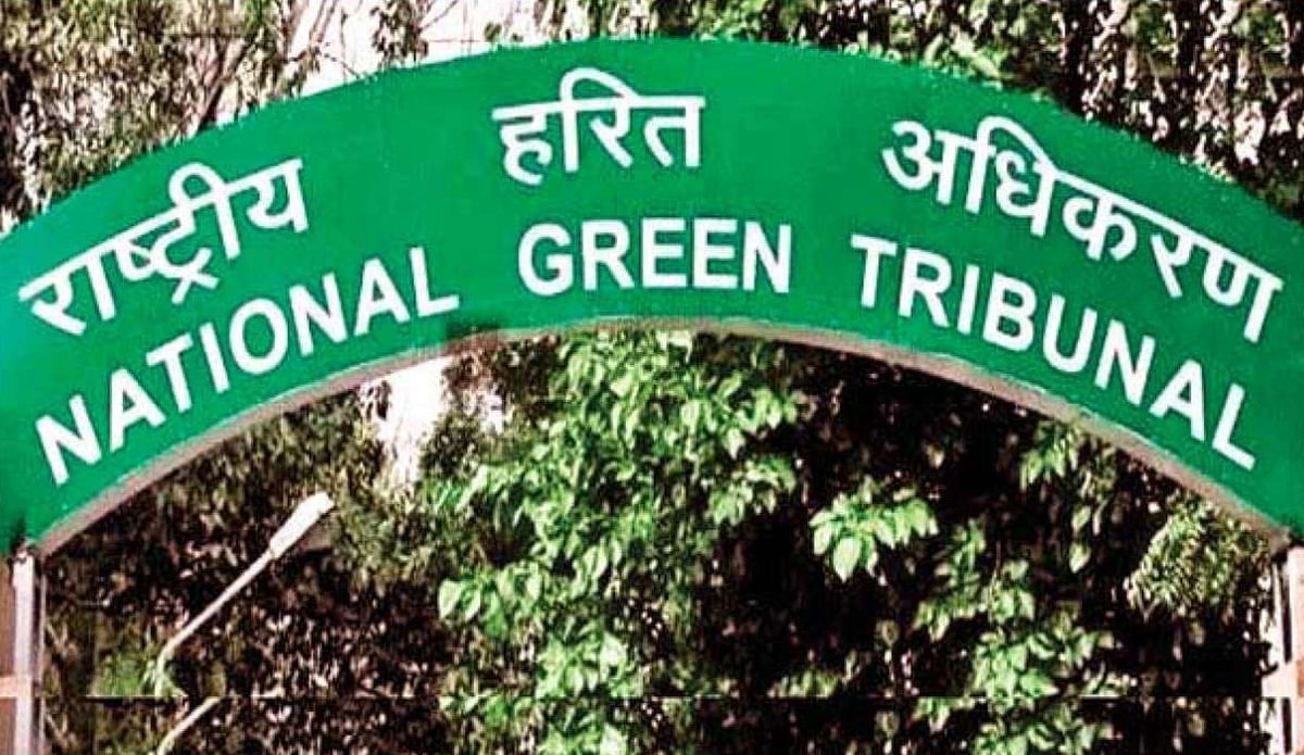 National Green Tribunal : राज्य प्रदूषण नियंत्रण बोर्ड का आदेश, नौ से ज्यादा पशु पालने के लिए लेनी होगी मंजूरी