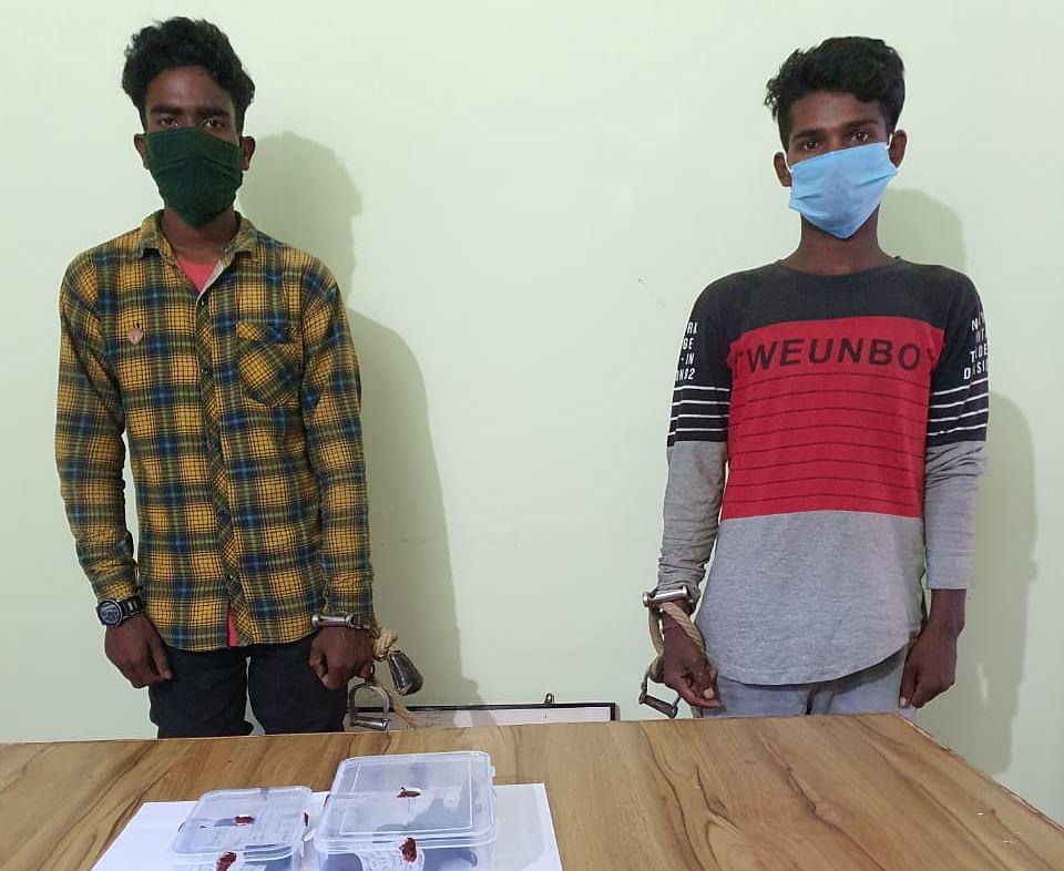 Jharkhand Breaking Updates: गुमला में दो नक्सली संगठनों के बीच भीषण मुठभेड़, सैकड़ों राउंड गोलियां चलीं