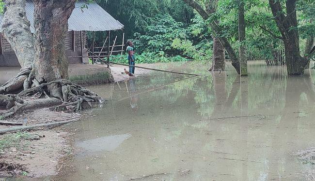 महानंदा नदी के जलस्तर में आयी कमी, निचले इलाकों में फैला बाढ़ का पानी, गंगा समेत कई नदियों का बढ़ा जलस्तर