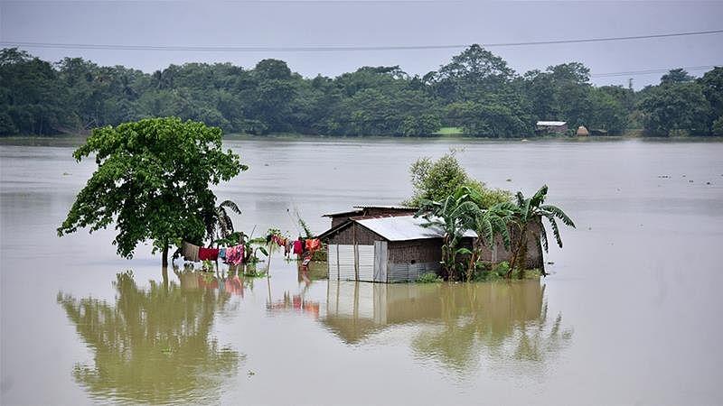 Flood in Bihar: बाढ़ से 11 जिलों में 4.87 हेक्टेयर में फसलों का हुआ नुकसान, किसानों को अब तक 1220 करोड़ की मदद