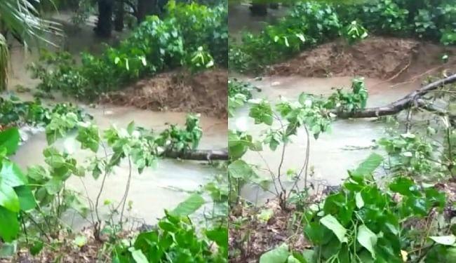 गोपालगंज में किसानों ने रोका तटबंध का प्रोटेक्शन कार्य, जानें कैसे हुए राजी
