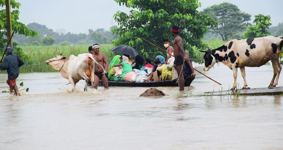 Bihar Flood, Live Updates: नदियों के जलस्तर स्थिर होने के बावजूद डूबे हुए हैं 16 जिलों के 1,185 पंचायतें