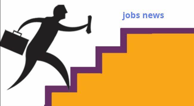 रोजगार : अमेरिकी कंपनी सेल्सफोर्स देगी 13 लाख भारतीयों को नौकरी, अरबों रुपये का करेगी निवेश