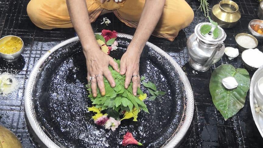 बैद्यनाथ व बासुकिनाथ मंदिर में कूपन सिस्टम से पूजा कराने पर विचार