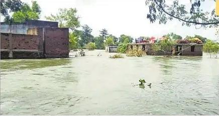 Flood in Bihar : लगातार हो रही बारिश से बढ़ रहा जल स्तर, कटाव के खतरे से विभाग सतर्क