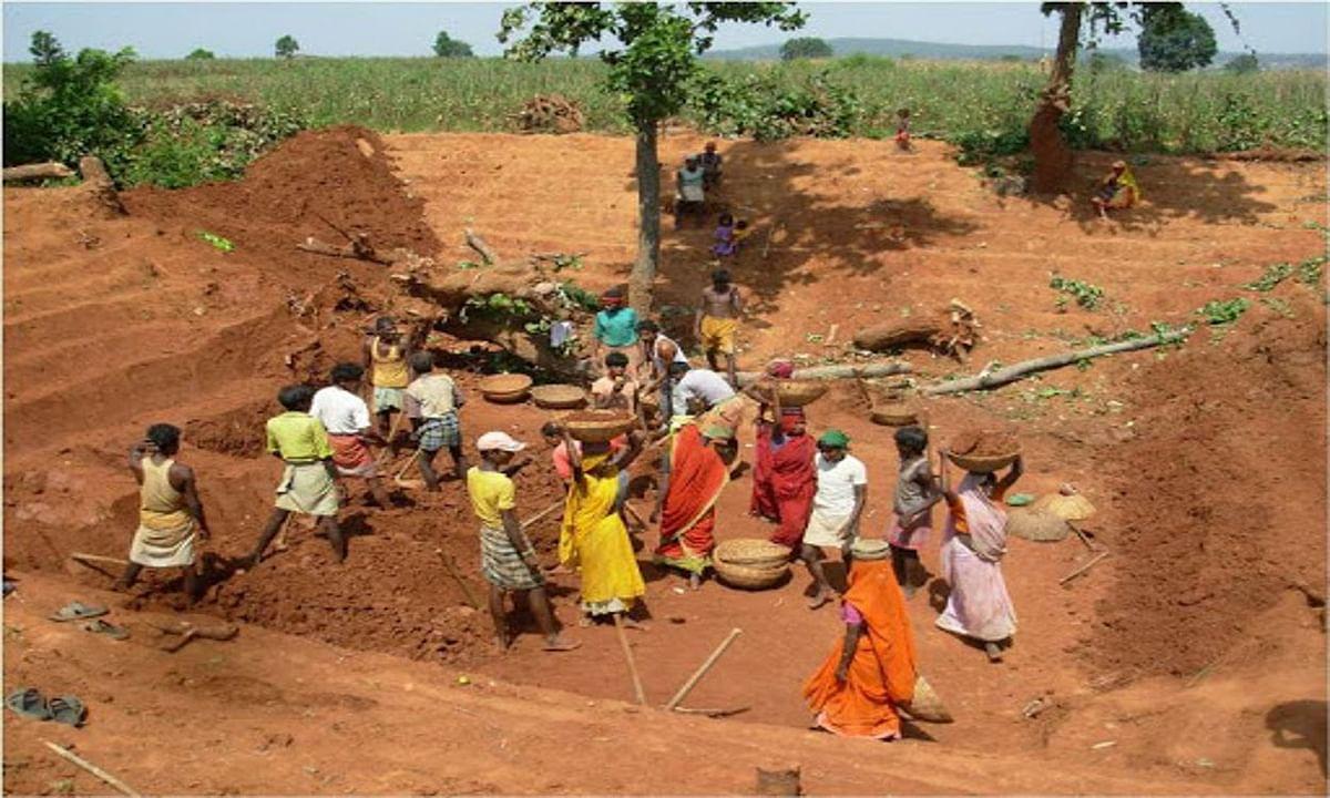 बंगाल के 12 जिलों में मनरेगा में श्रमिकों को मिला बेहतर काम, टॉप 50 में शामिल