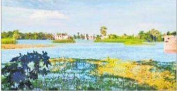 इस गांव में चारों तरफ दिखता है पानी ही पानी, दाने-दाने को मोहताज लोग