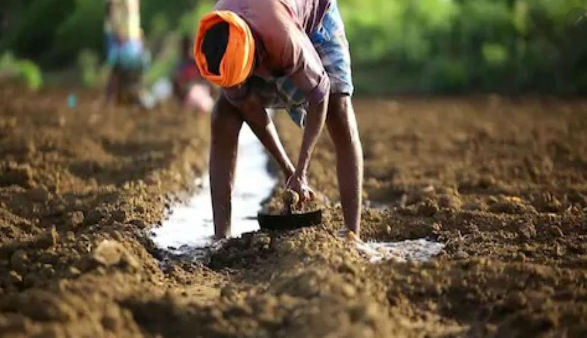 2 महीने में किसानों को बड़ा तोहफा देगी मोदी सरकार ? PM Kisan Samman Nidhi की रकम बढ़ाने पर हो सकता है फैसला
