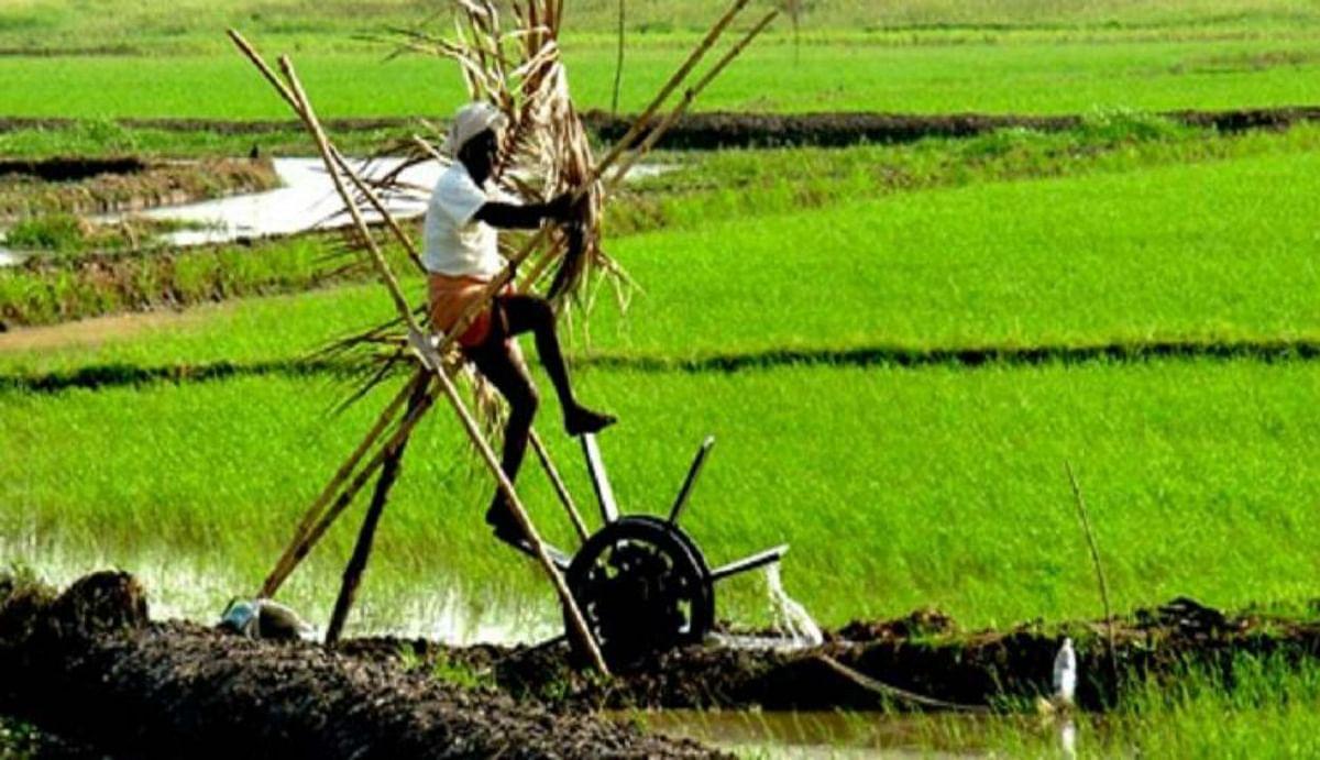 'कोविड-19 को परास्त कर अर्थव्यवस्था को संजीवनी देने का काम करेगा देश का अन्नदाता'