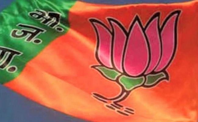भाजपा ने उत्तर प्रदेश राज्यसभा उपचुनाव के लिए जय प्रकाश निषाद को बनाया उम्मीदवार