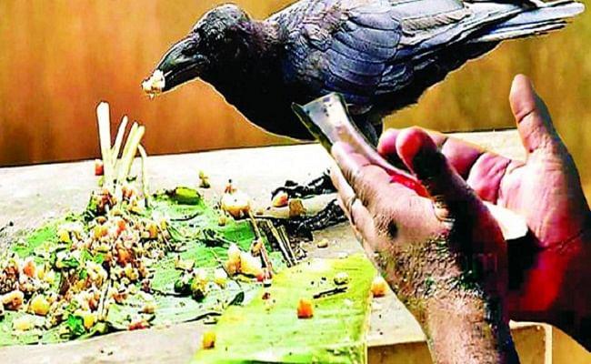 Pitru Paksh 2020: पहला पितृपक्ष श्राद्ध आज, जानें खास नियम, श्राद्ध विधि और कैसे करें पितरों को याद